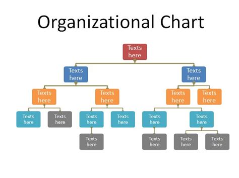 organizational chart format in word