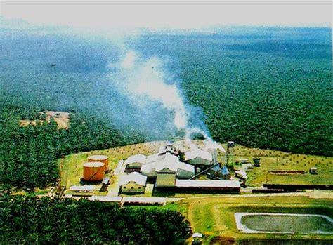Minyak Kelapa Sawit Di Indonesia pabrik minyak kelapa sawit deli kajian arkeologi sosial