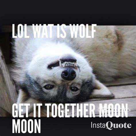 Moon Moon Meme - moon moon memes 28 images image 534240 moon moon know