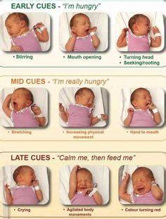 1000+ images about infant feeding on pinterest | timeline