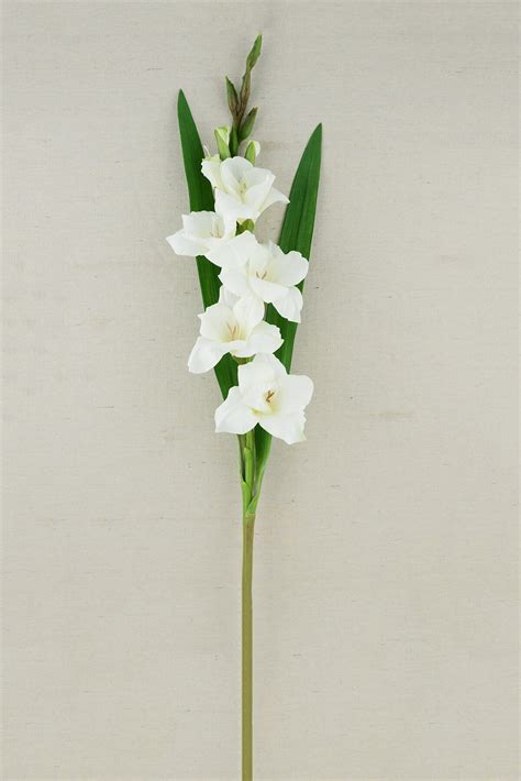 Table Flower Arrangements Gladiolus Flower Cream 33in