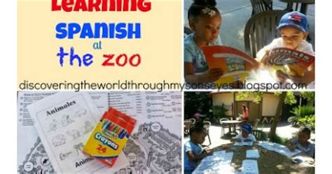 through with the zoo books discovering the world through my s learning