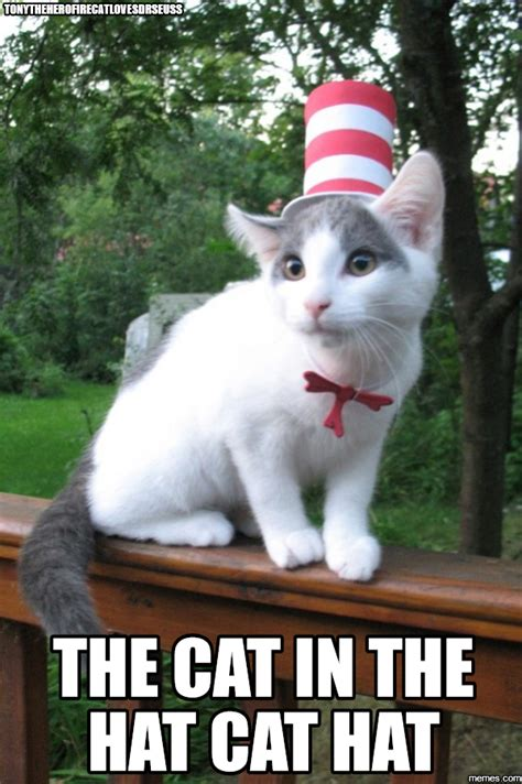 Cat In The Hat Meme - tonytheherofirecatlovesdrseuss the cat in the hat cat hat