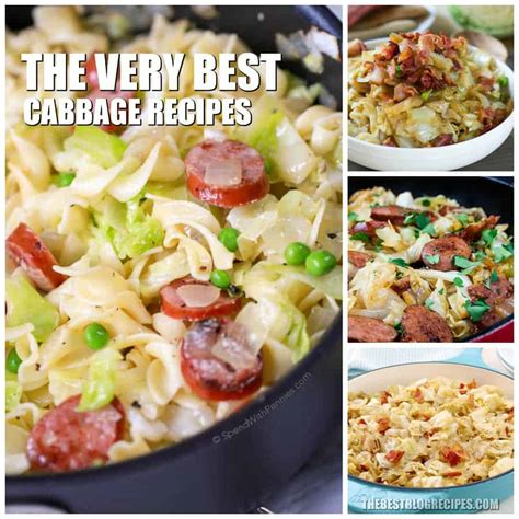 best cabbage recipe the best cabbage recipes the best recipes