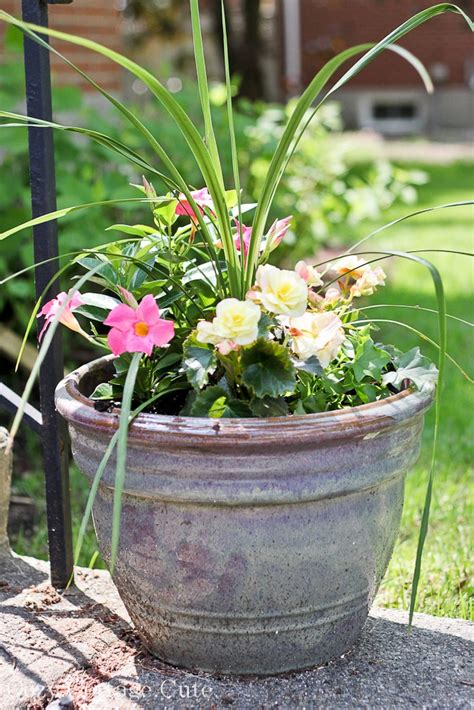 Front Yard Planters by Cozy Cottage Front Yard Planters Outside