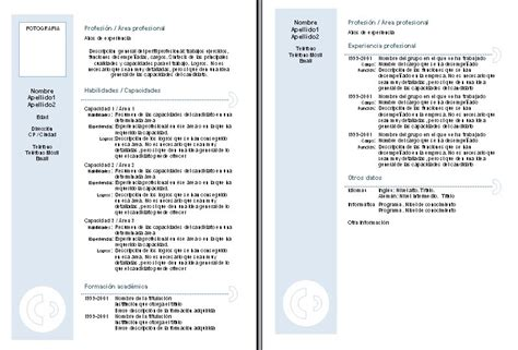 Modelo Curriculum Vitae Chile Para Descargar Curriculum Vitae Curriculum Vitae Descargar