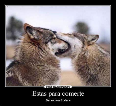 imagenes de lobos llorando estas para comerte desmotivaciones