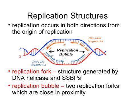 03 origins of replication