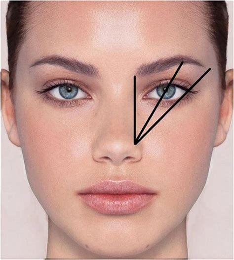 how to soften hair on eyebrows and get them to lay down best 25 eyebrow shapes ideas on pinterest