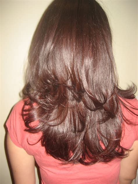 show back of hair with layers silvestre family