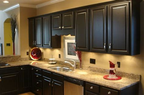 Kitchen Trends How To Paint Kitchen Cabinets Black Painted Black Kitchen Cabinets