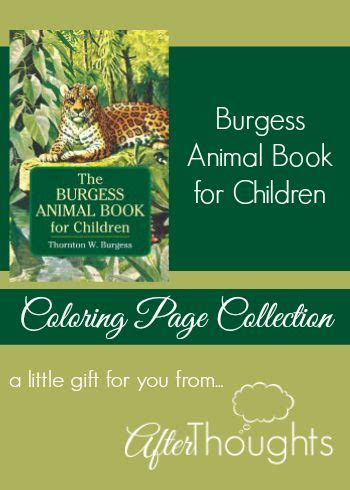 the burgess animal book for children books best 25 animal books ideas on animal pictures