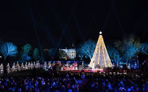 christmas trees dc in washington dc what to do travel leisure