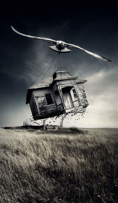 The Flying House by Flying House Flying House And Pictures