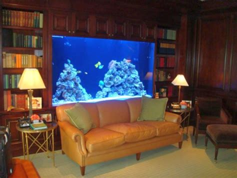 contemporary fish tank built in bookshelf