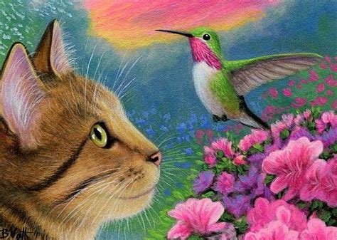 details about tabby cat calliope hummingbird spring flower