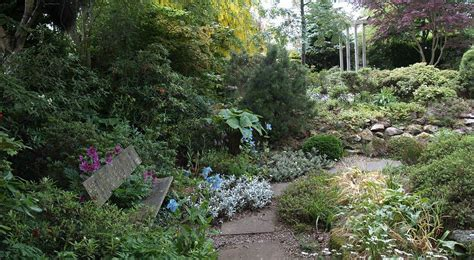 Scottish Rock Garden Club Scottish Rock Garden Club Scottish Rock Garden Club