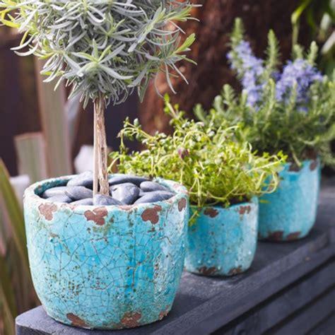 fiori prezzi prezzi dei vasi arredamento scelta dei vasi arredare