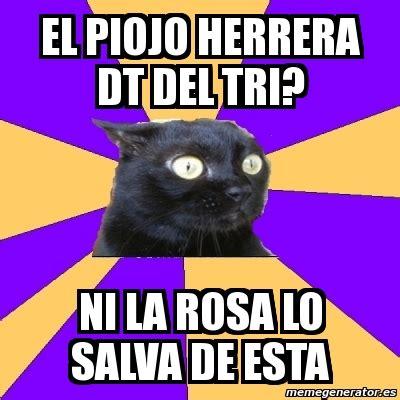 Anxiety Cat Meme Generator - meme anxiety cat el piojo herrera dt del tri ni la rosa
