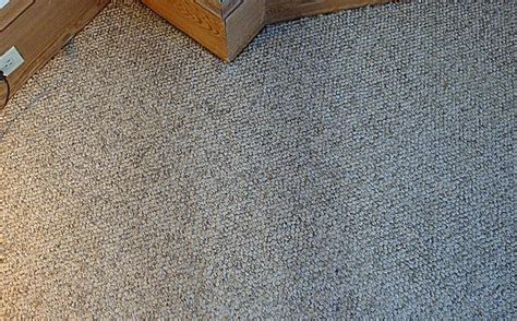 wall carpet wall to wall carpet repair in natick ma 01760 masslive com
