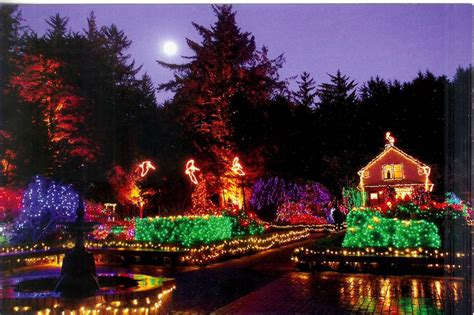 the ultimate oregon coast christmas light tour is