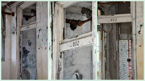 waverly room 502 shouldered hawks of tingsgrove and beyond waverly sanatorium