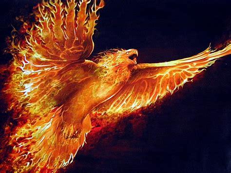 stunning fire wallpaper technosamrat