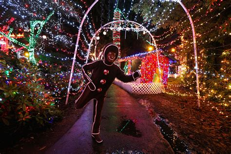 vancouver stanley park lights up for christmas