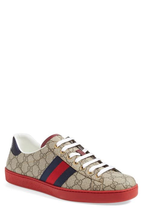 gucci shoes for gucci sneakers www pixshark images galleries