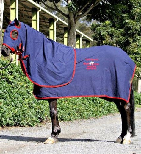 show rugs for sale cotton drill show sets top