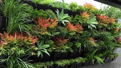 plants  vertical garden greenkosh