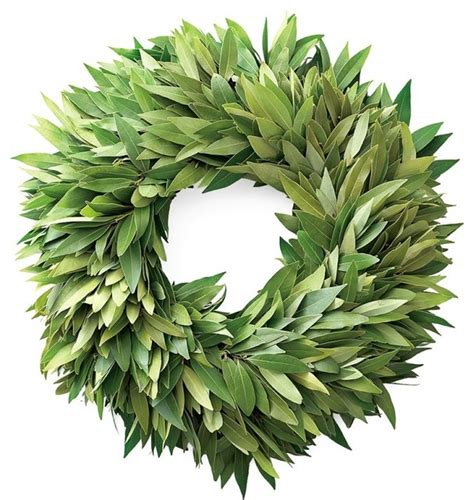 Bayleaf Wreath Bay Leaf Wreath Traditional Wreaths And Garlands By