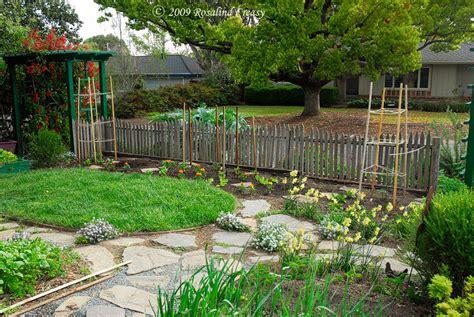 Edible Backyard Plants by Front Yard Edible Garden Www Pixshark Images