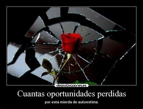 imagenes oportunidades amor cuantas oportunidades perdidas desmotivaciones