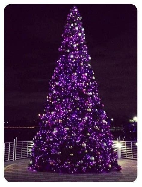 purple xmas tree lights roselawnlutheran