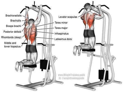 assisted pull up a compound exercise target