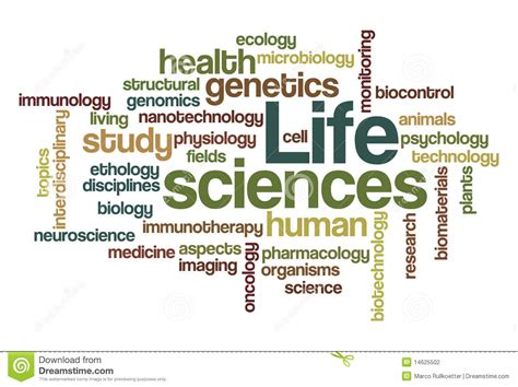 biography definition in science life sciences word cloud stock photography image 14625502