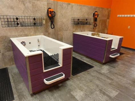 dog bathtubs for home use dars dirty dogs