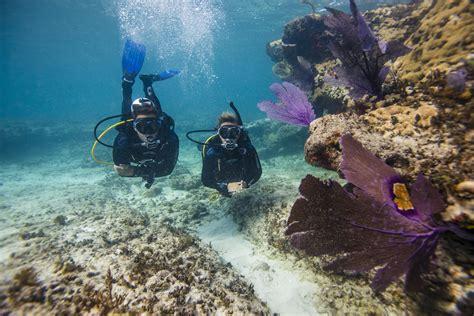 scuba diving safe