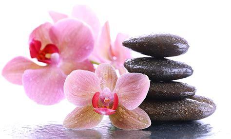 Bilder Mit Steinen Und Blumen by Bilder Spa Orchideen Blumen Tropfen Steine Gro 223 Ansicht