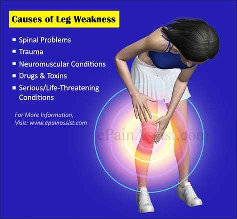back legs weak suddenly temporary leg numbness and weakness my