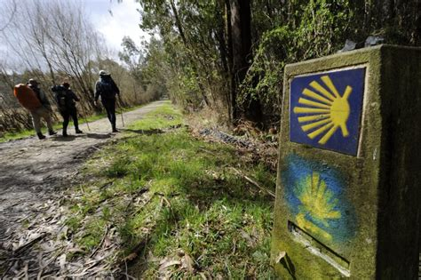camino de santiago frances el camino de santiago franc 233 s