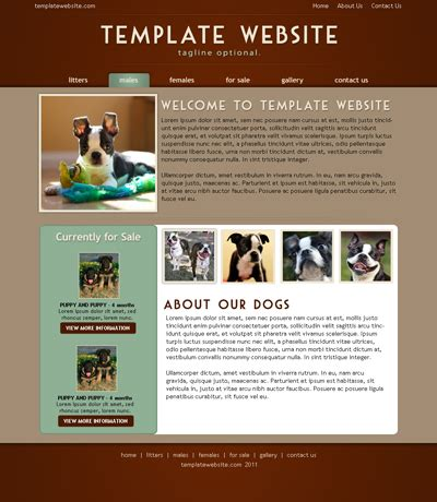 K9 Wire Choose Website Template How To Choose Website Template