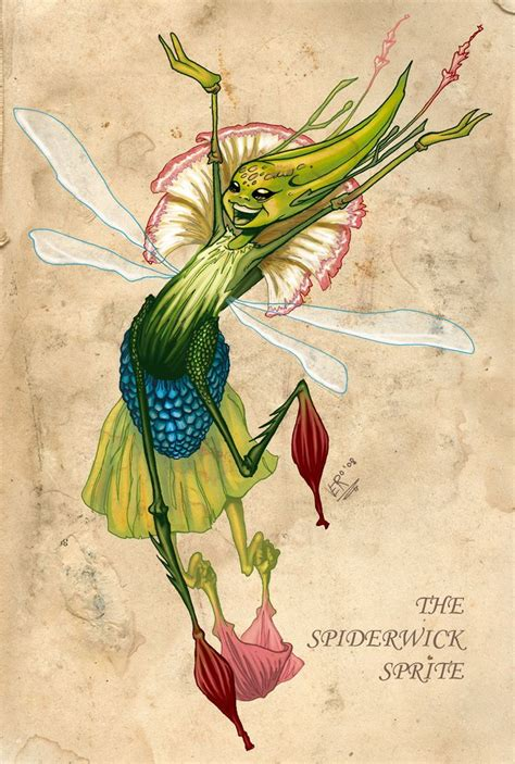 the field guide spiderwick 1442486929 36 best images about spiderwick on wood elf costume sprites and pranks