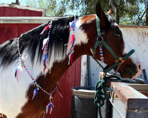 rhythm for horses 29 best images about rhythm on