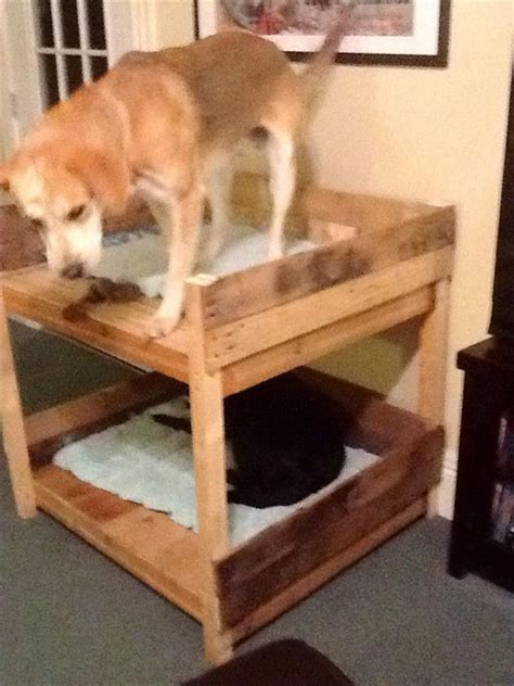 dog bunk bed diy pet bunk bed plans to build dog bed pallet