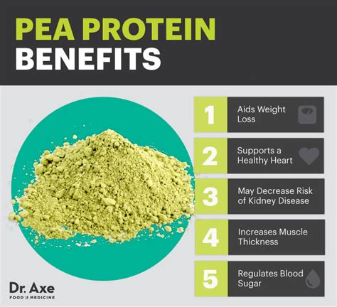 Journal Of Plant Disease - the 5 surprising health benefits of pea protein and delicious recipes conscious life news