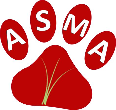 Obat Alami Penyakit Asma obat tradisional penyakit asma secara alami kutono