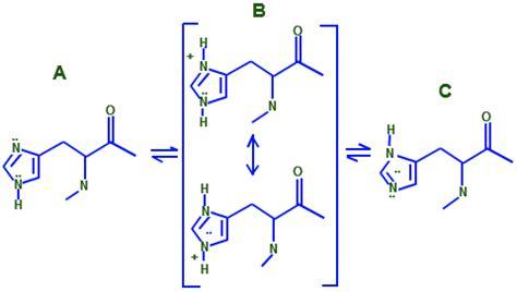 Histidine Protonation by Histidine L Histidine Histidine Pka Chemistry
