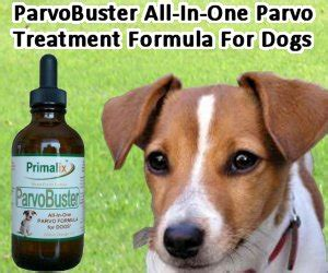 parvo for dogs is primalix parvobuster all in one parvo formula for dogs a prescription medicine